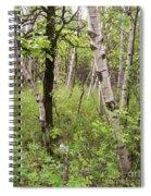Oak And Birch Spiral Notebook