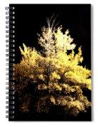 Oak At Night Spiral Notebook