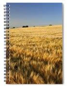 Oak At The Field Spiral Notebook