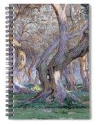 Oak Grove Spiral Notebook