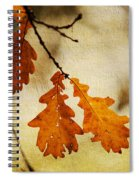 Oak Leaves At Autumn Spiral Notebook