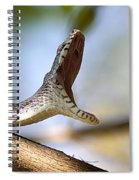 Oak Snake  Spiral Notebook