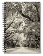 Oak Trees Of Charleston South Carolina In Sepia Spiral Notebook