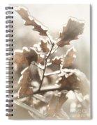 Oak Tree Leaves Frozen In Ice Spiral Notebook