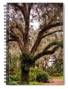 Oak Tree Spiral Notebook