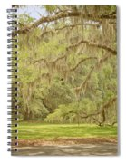 Oak Trees Draped With Spanish Moss Spiral Notebook