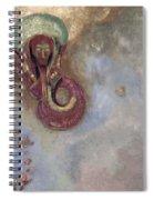 Oannes Spiral Notebook