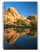 Oasis Reflections Spiral Notebook