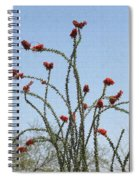 Ocatillo With Red Blossoms Spiral Notebook