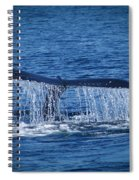 Ocean Dive Of The Humpback Whale Spiral Notebook