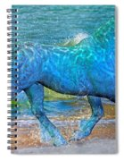 Ocean Of One I Of II Spiral Notebook