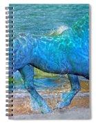 Ocean Of One I Of II Spiral Notebook