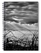 Ocean Rays Black And White Spiral Notebook