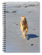 Ocean Run Spiral Notebook