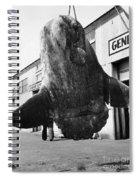 Ocean Sunfish Mola Mola  Monterey 1946 Spiral Notebook