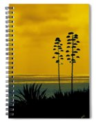 Ocean Sunset With Agave Silhouette Spiral Notebook
