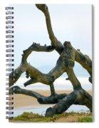 Oceano Dunes After The Storm II Spiral Notebook