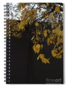 Ochre And Umber Spiral Notebook