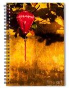 Ochre Wall Silk Lantern 03  Spiral Notebook