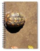 Revelation 3 3 Spiral Notebook