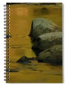 October Colors In Tennessee Spiral Notebook