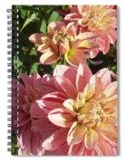 October Dahlia Field Spiral Notebook