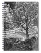 October Evening Monochrome Spiral Notebook