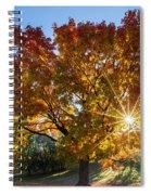 October Maple  Spiral Notebook