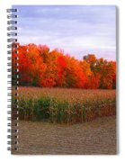 October Sunset On The Autumn Woods Spiral Notebook