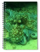 Octopus In The Sand Spiral Notebook