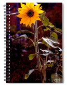 Ode To Sunflowers Spiral Notebook