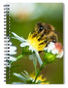 Of Bee And Flower Spiral Notebook