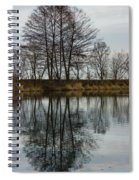 Of Mirrors And Trees Spiral Notebook