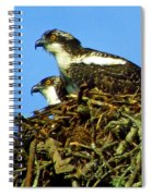 Of One Mind Spiral Notebook