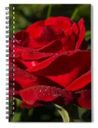 Of Red Roses And Diamonds  Spiral Notebook