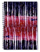 Of Stripes Spiral Notebook