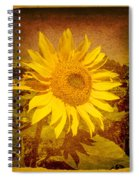 Of Sunflowers Past Spiral Notebook