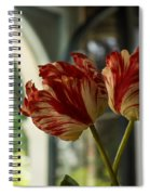 Of Tulips And Windows Spiral Notebook