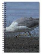 Oh Boy My Favorite Lunch Spiral Notebook