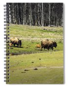 Oh Give Me A Home Where The Buffalo Roam Spiral Notebook