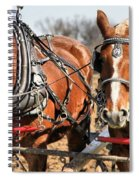Ohio Draft Horses Spiral Notebook