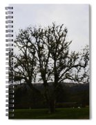 Oil Painting - An Old Tree In The Middle Of A Garden And Playground Spiral Notebook