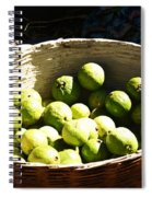 Oil Painting - Based Full Of Guavas Spiral Notebook