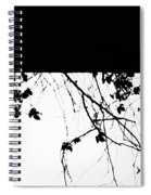 Oil Painting - Small Plant Branches Falling Over A Ledge - Horizontal Spiral Notebook