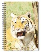 Oil Painting - An Alert Tiger Spiral Notebook