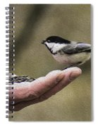 Oil Painting Black-capped Chickadee  Spiral Notebook
