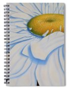 Oil Painting - Daisy Spiral Notebook