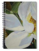 Oil Painting - Sydney's Magnolia Spiral Notebook