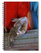 ok Spiral Notebook