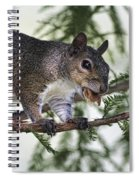 Ok You Caught Me Spiral Notebook